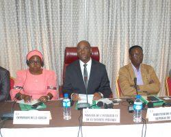 Lancement en Republique du Benin du Réseau Epidemiologique Ouest-Africain sur la Consommation de Drogues (2)